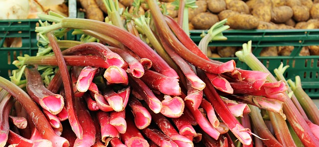Frischen Rhabarber vom Markt gibt es von April bis Juni