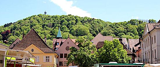 Bauernmarkt und Wochenmarkt Freiburg