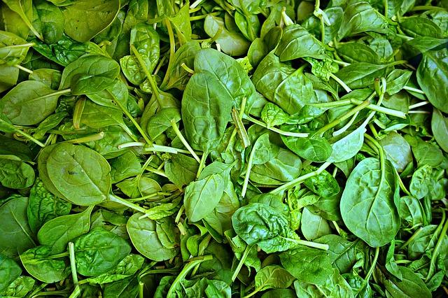 Frischer Spinat ist regionales Superfood