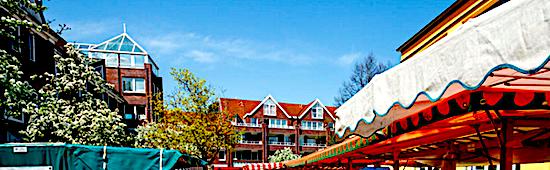 Alte Elbgaustrasse - Markt